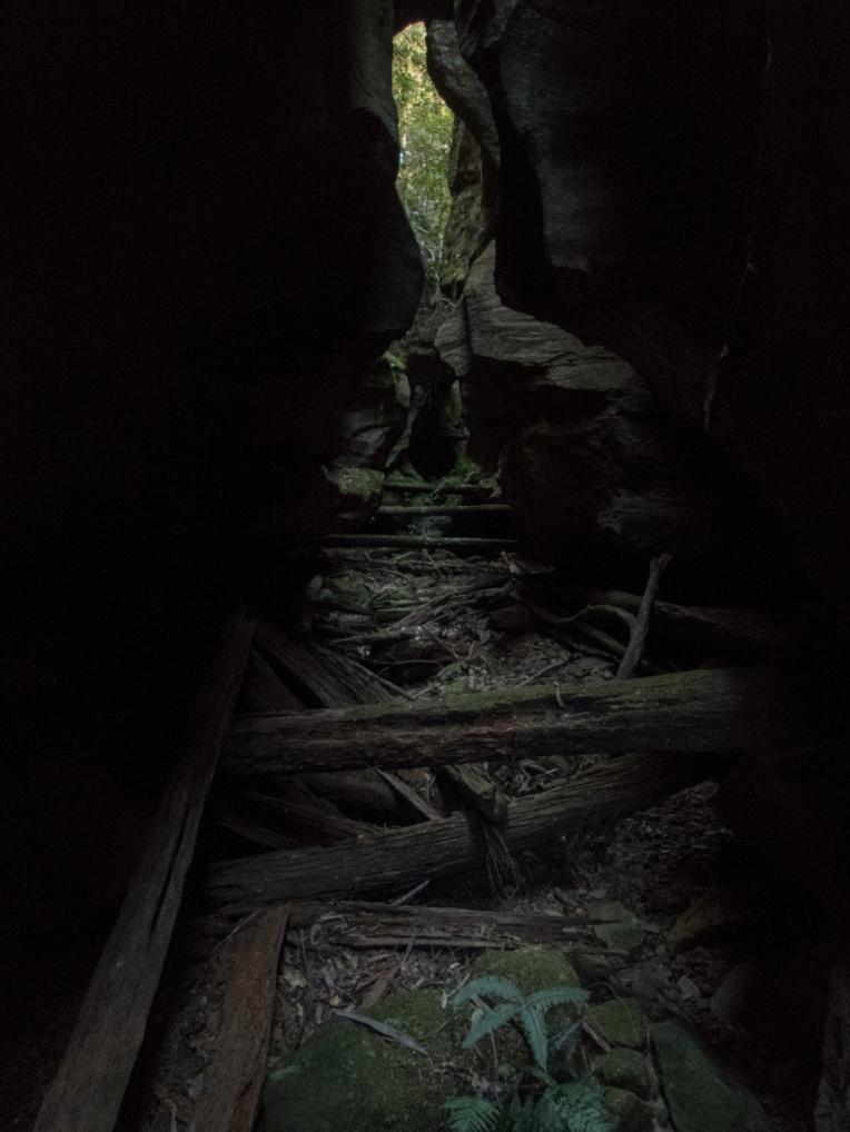 Timber chute-12.jpg