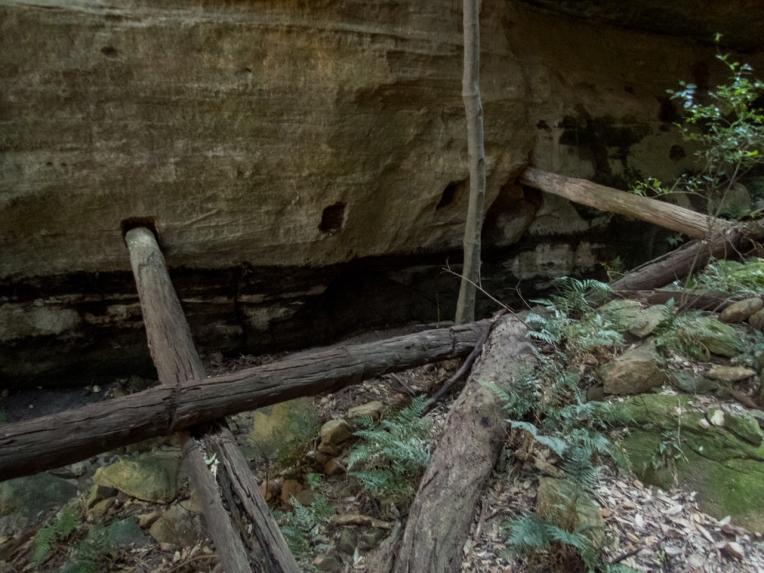 Timber chute-8.jpg
